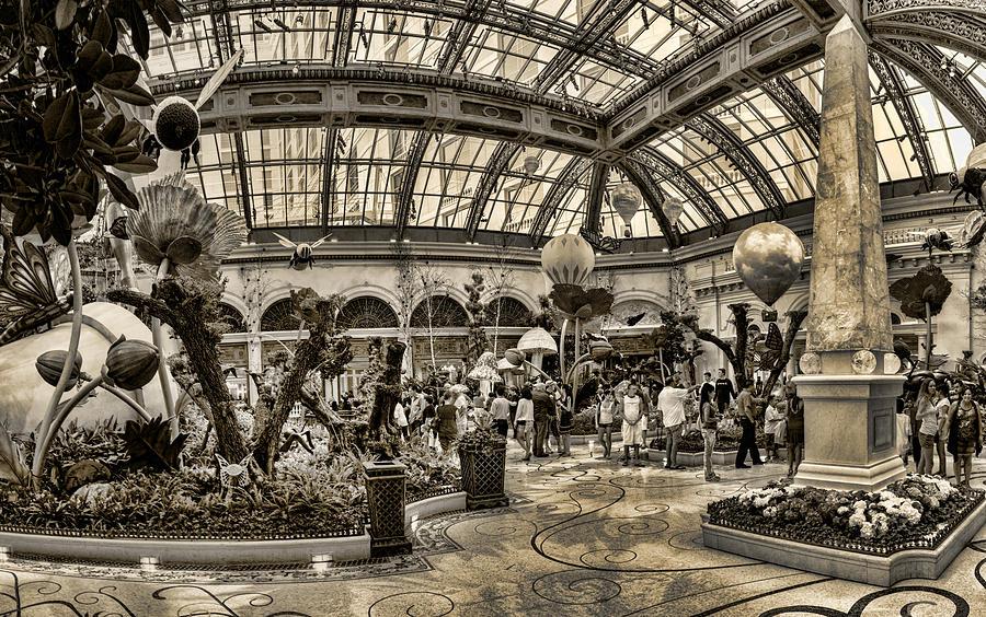 Surreal Gardens Photograph