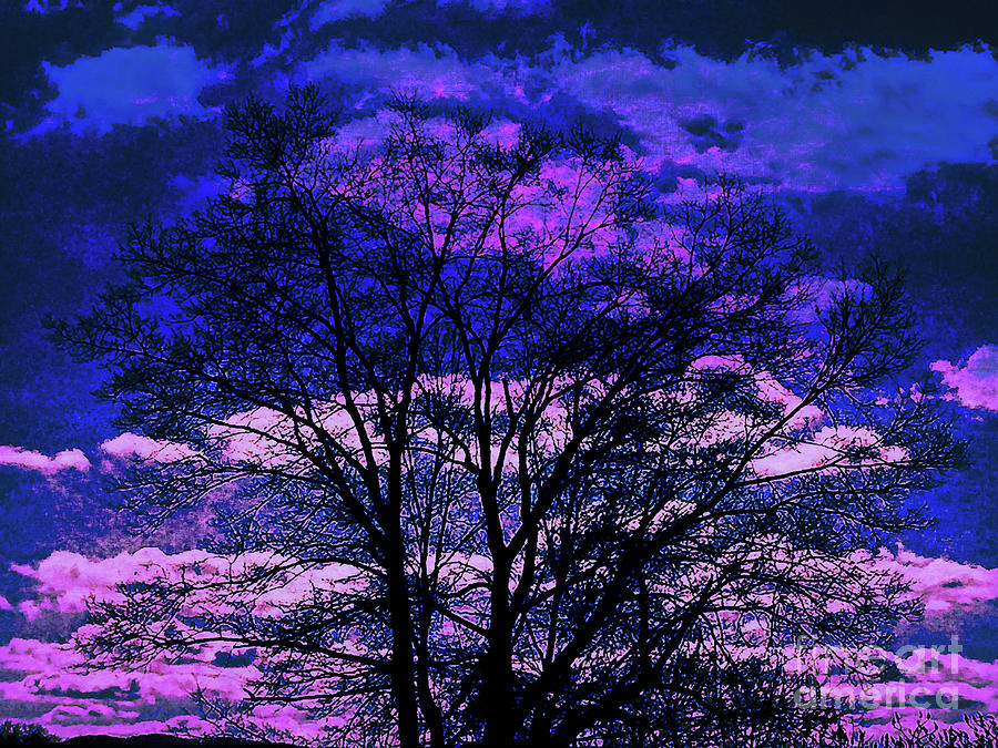 Surreal Tree Silhouette by Dee Flouton