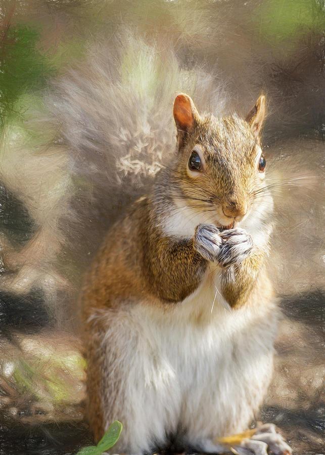 Surreptitious Squirrel by Bill Tiepelman