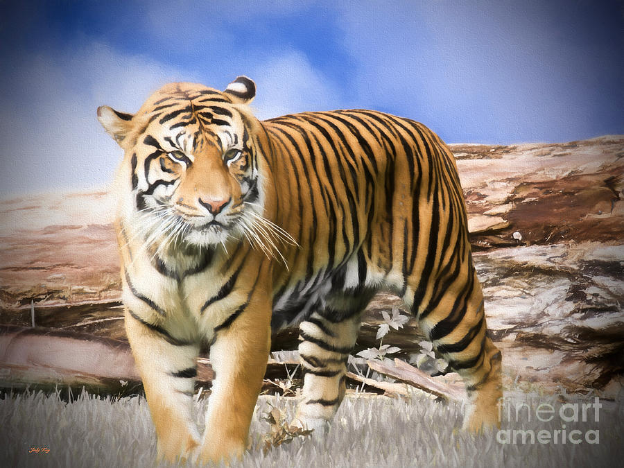 African Animals Painting - Survivor by Judy Kay