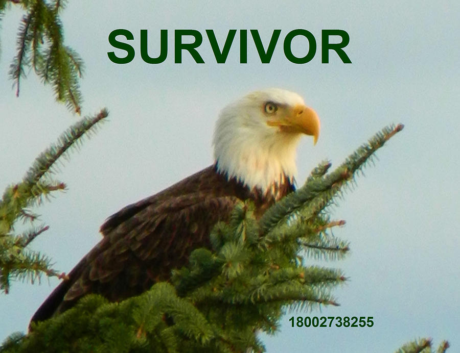 Survivor With Hotline by Gallery Of Hope