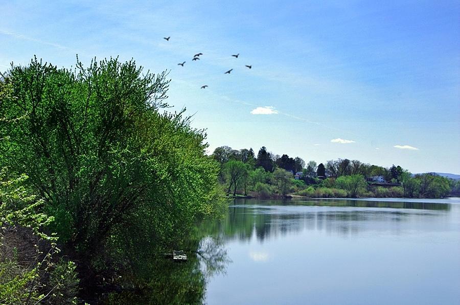 Susquehanna Photograph - Susquehanna Serenty by Stephanie Calhoun