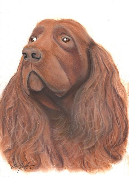 Dog Painting - Sussex Spaniel by Linda Henthorn