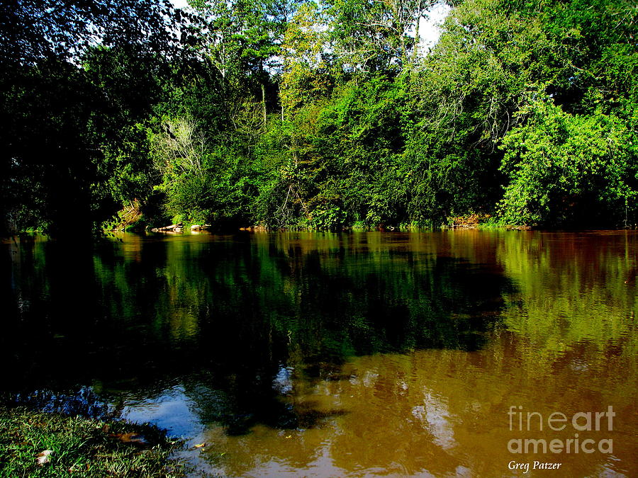 Patzer Photograph - Suwannee River by Greg Patzer