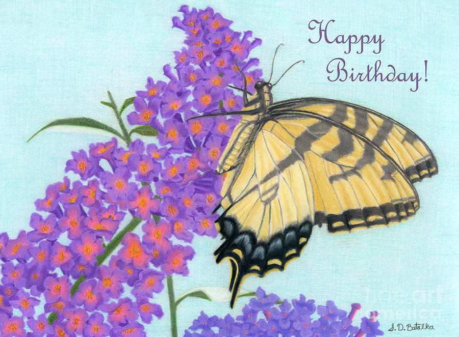 Swallowtail Butterfly And Butterfly Bush Happy Birthday Cards – Butterfly Birthday Card