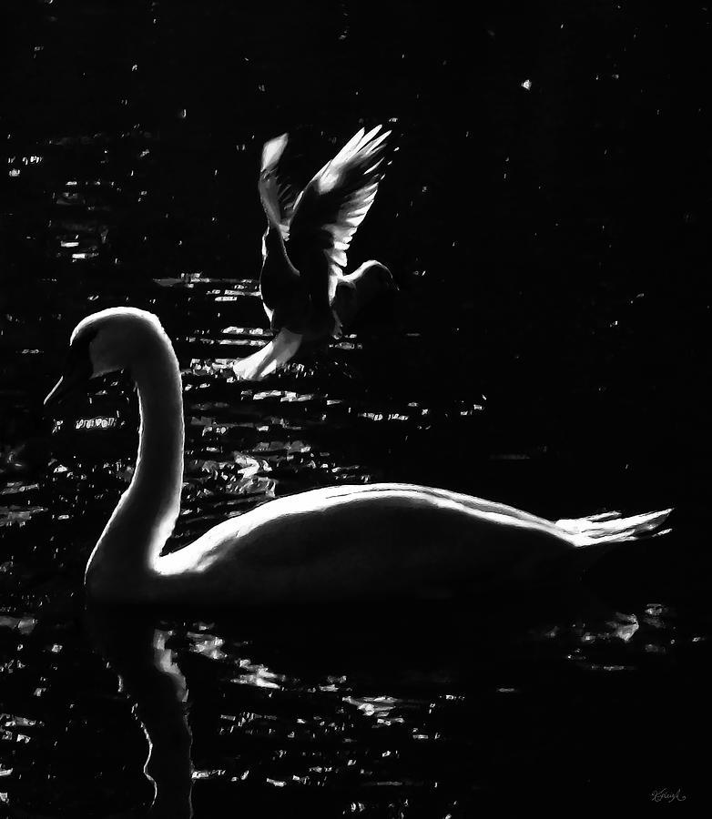 WATER BIRDS by Kipleigh Brown
