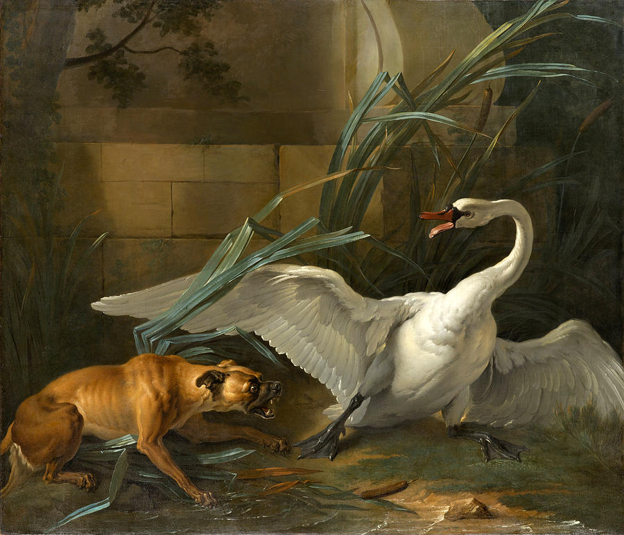 Beautiful Painting - Swan Attacked by a Dog by Jean-Baptiste Oudry