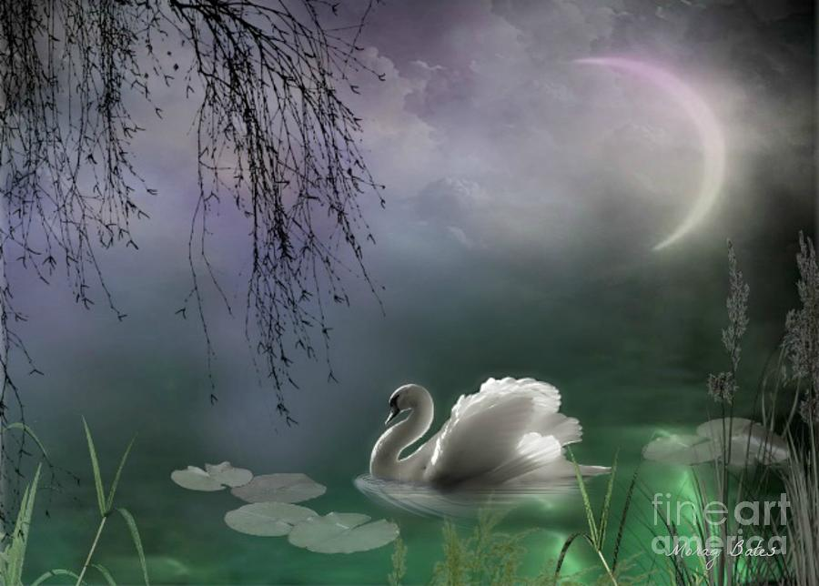 Swans By Moonlight >> Swan By Moonlight Mixed Media By Morag Bates