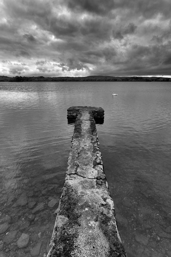 Swan Lake Photograph