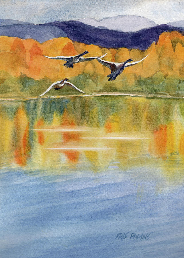 Watercolor Painting - Swan Lake Revisited by Kris Parins