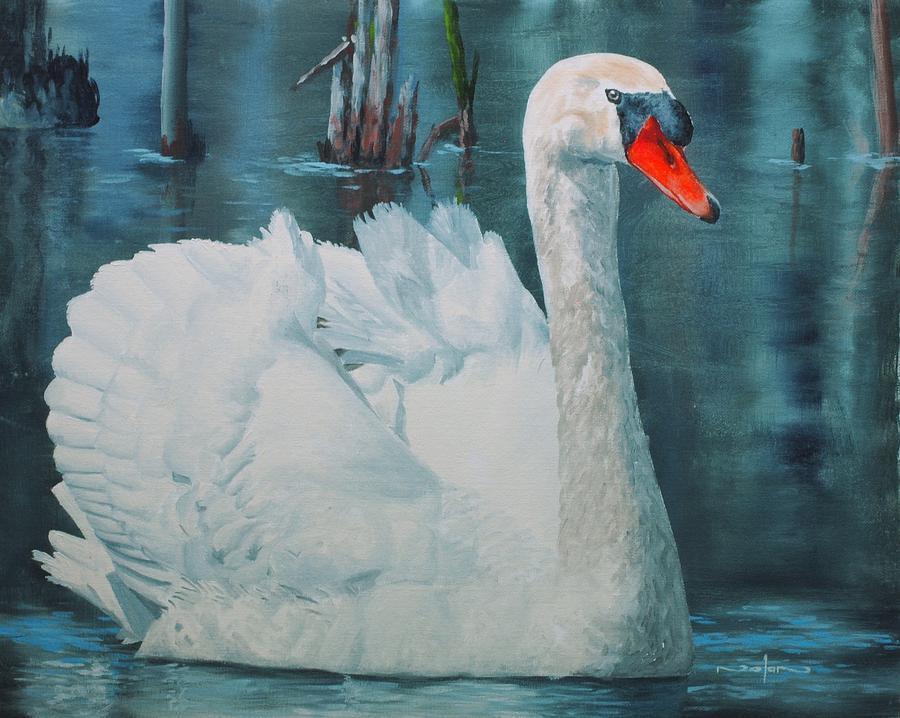 Oil Painting - Swan by Nolan Clark