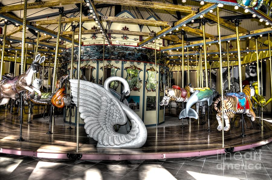 Carousel Photograph - Swan Seat At The Carousel  by Michael Garyet