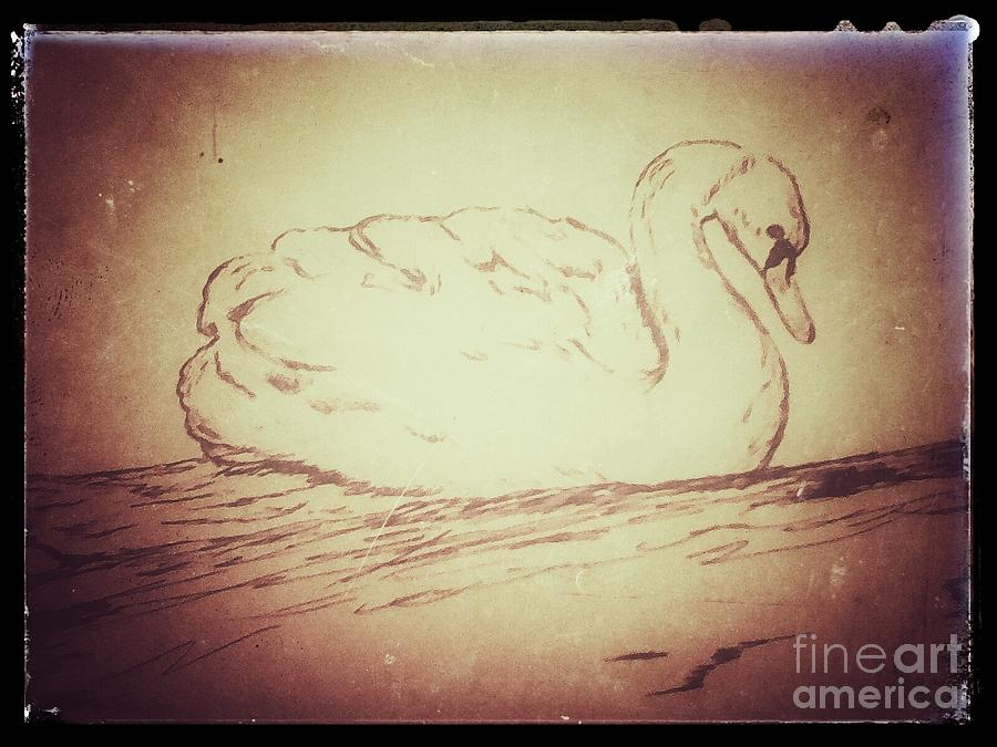 Swan Digital Art - Swan Song by Ginny Youngblood