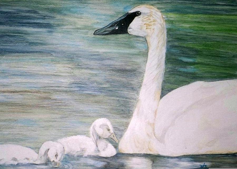 Swan Painting - Swans by Debra Sandstrom