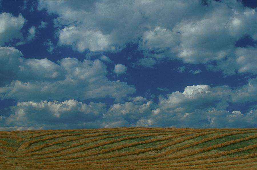 Swaths Photograph - Swaths And Clouds by Jack Gantzel