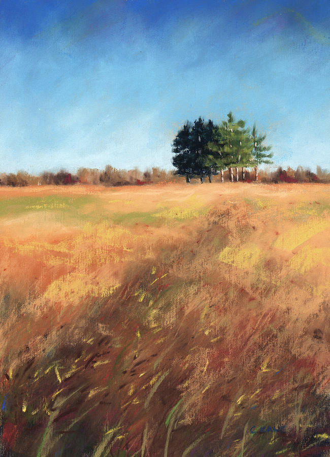 Field Pastel - Swaying Amber by Christine Camp