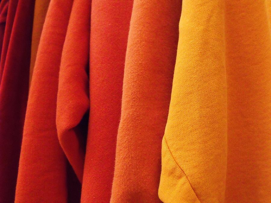 Sweatshirts Photograph - Sweatshirts by Anna Villarreal Garbis