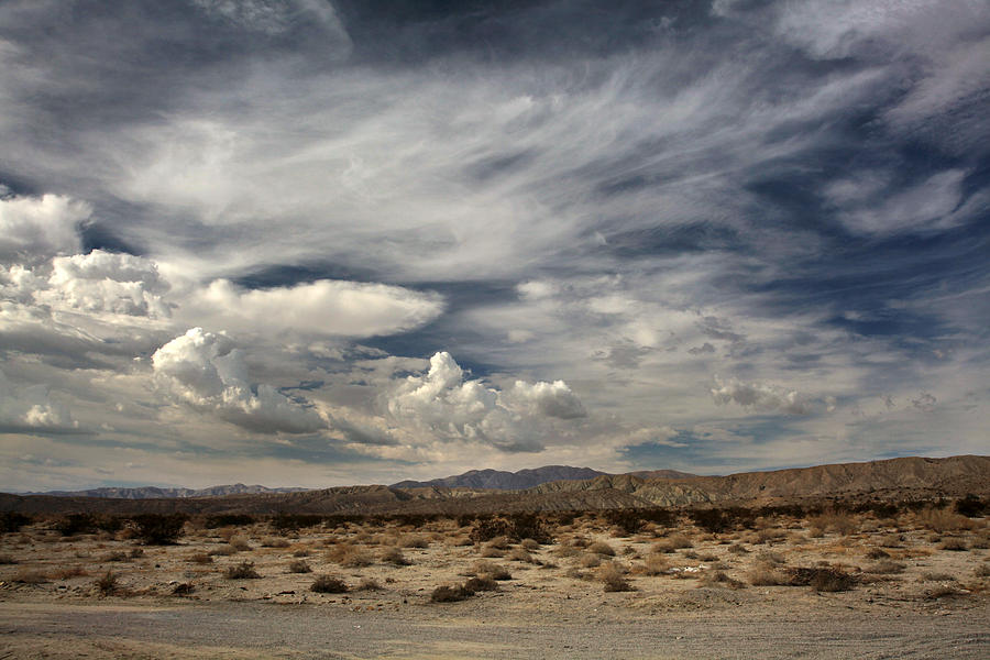 Palm Desert Photograph - Sweeping by Laurie Search