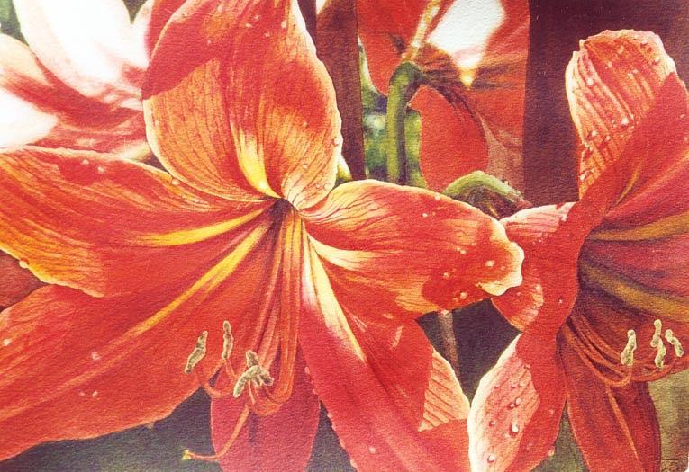 Flower Painting - Sweet Amaryllis by Marion  Hylton