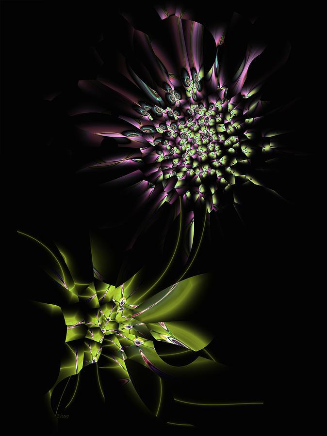 Fractal Digital Art - Sweet Briar by Harmen Wiersma