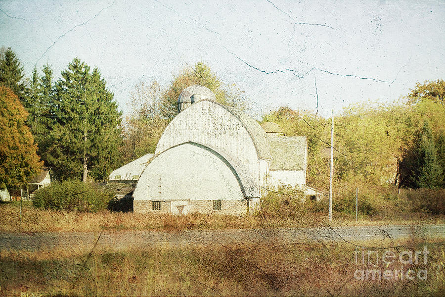 Barn Photograph - Sweet Fields Barn by Nikki Vig