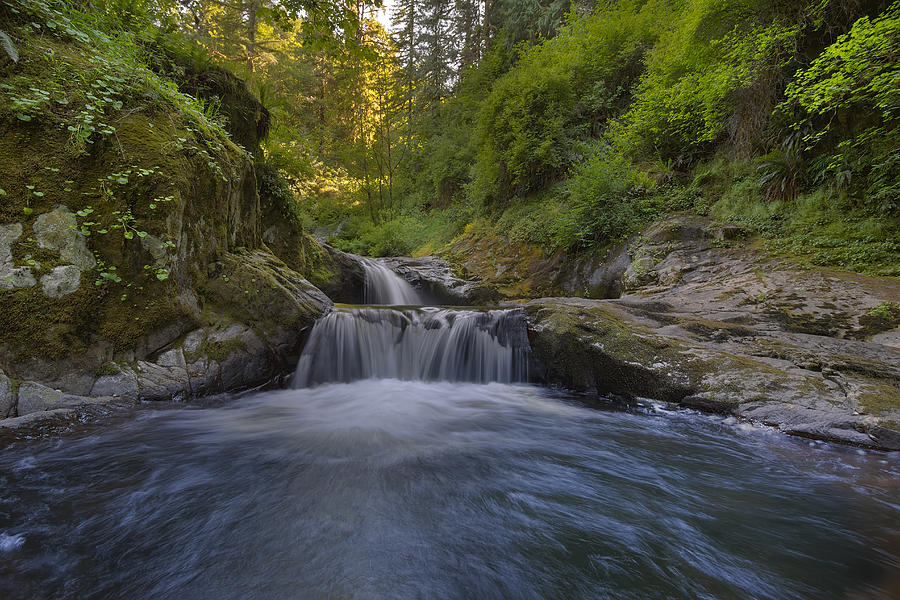 Siuslaw National Forest Photograph - Sweet Little Waterfall by David Gn