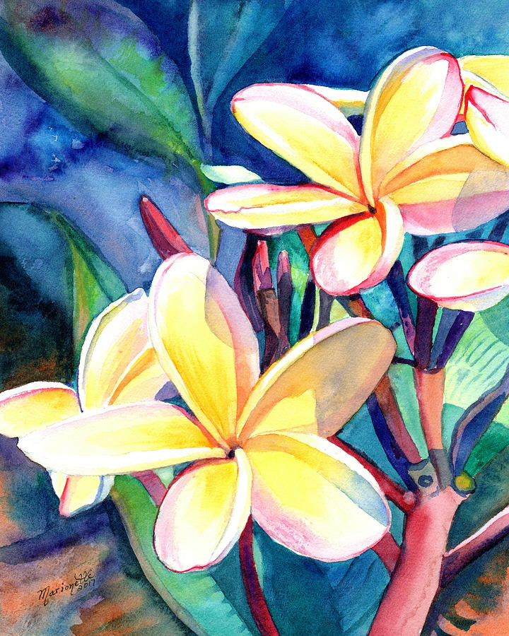 Sweet Plumeria 4 by Marionette Taboniar