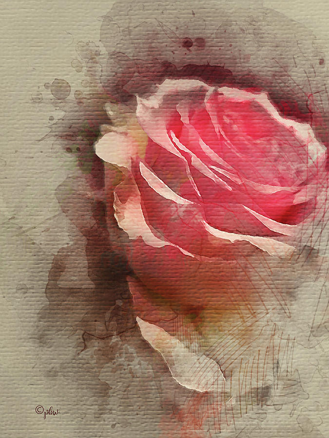 Sweet Rose by Paulette B Wright