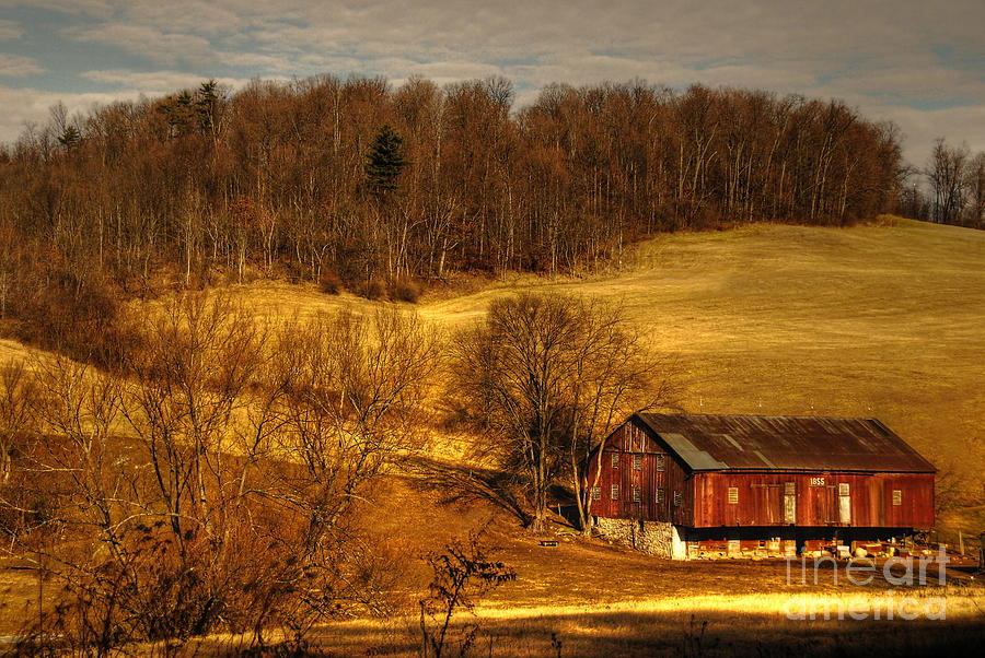Barn Photograph - Sweet Sweet Surrender by Lois Bryan