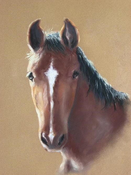Horse Painting - Sweetie by Carol Mueller