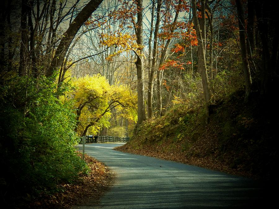 Autumn Photograph - Swift Shoal Road by Joyce Kimble Smith
