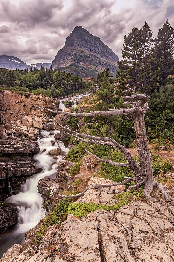 Glacier Photograph - Swiftcurrent Lake Falls by Peter Tellone