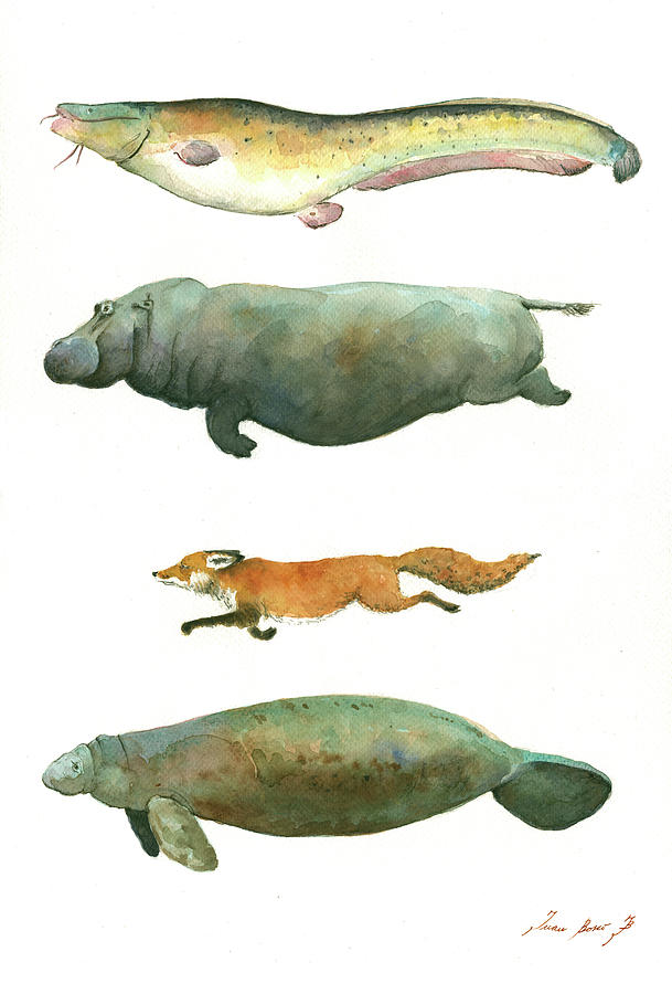Fox Watercolor Painting - Swimming animals by Juan Bosco
