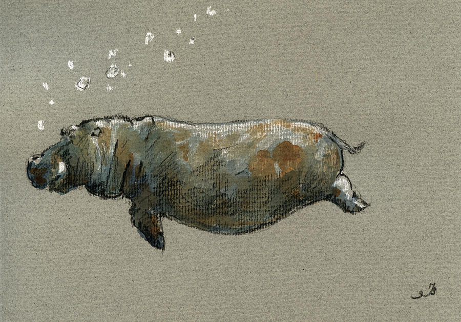 Swimming Hippo Painting By Juan Bosco