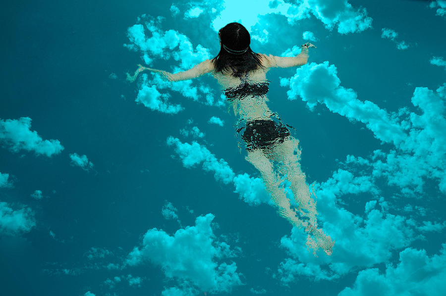 Swimming in the Sky by Harry Spitz
