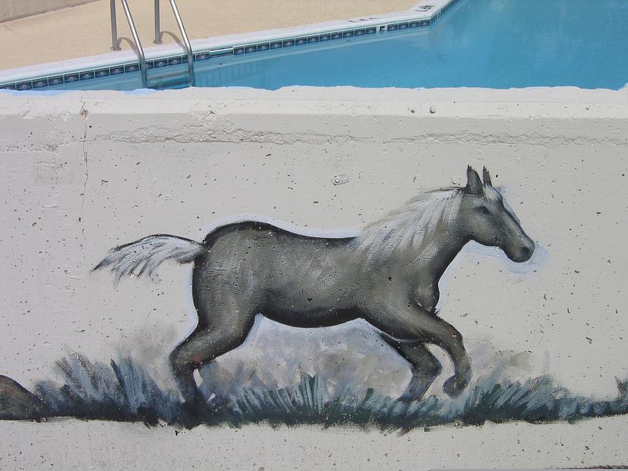 Swimming Pool Motel Horse Mural Number 1 Tombstone Arizona 2004