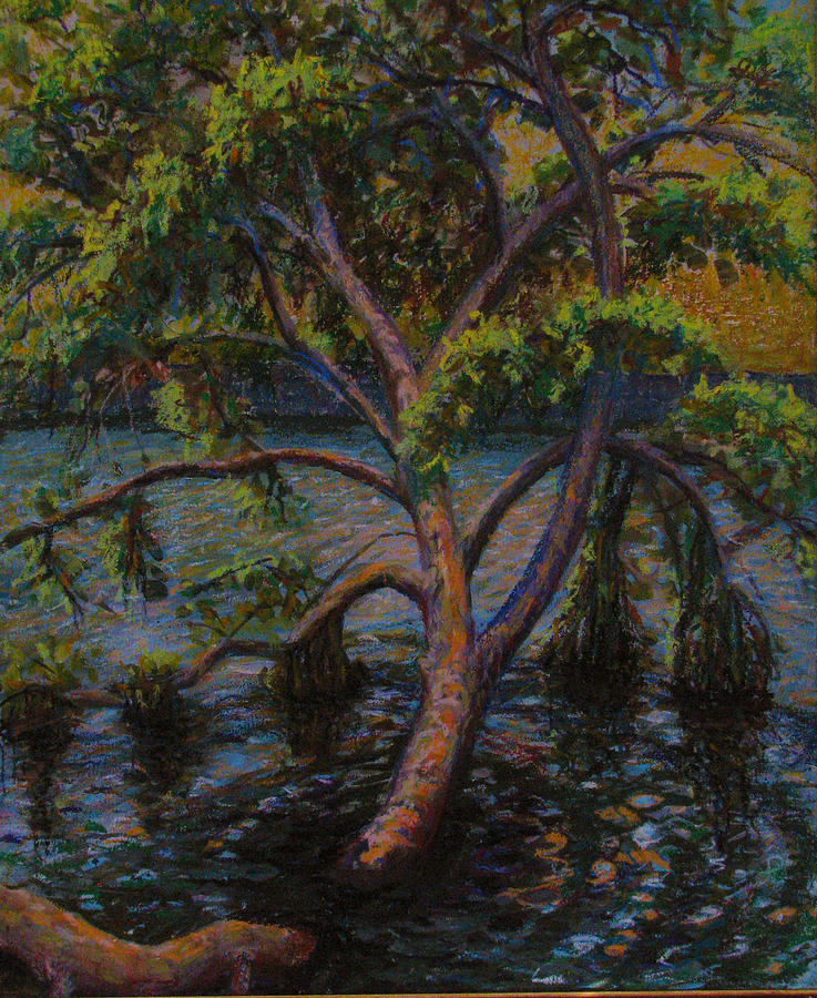 Tree Pastel - Swimming Tree by Art Nomad Sandra  Hansen