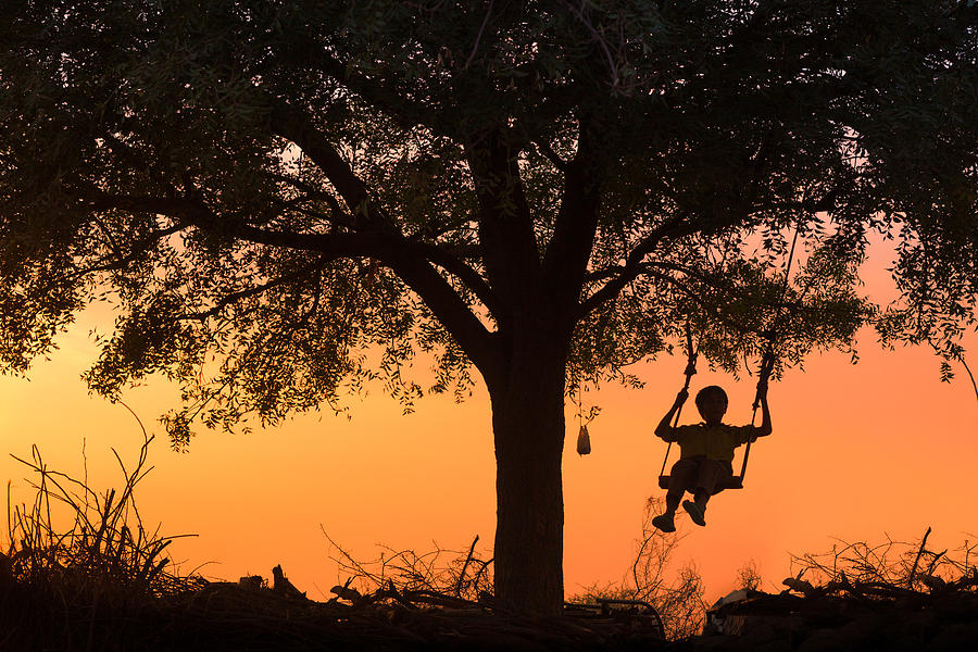 India Photograph - Swing by Marji Lang