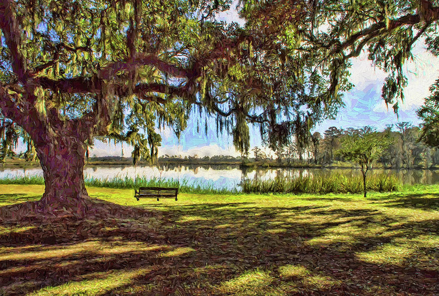 Swing under the Oaks by Sandra Anderson