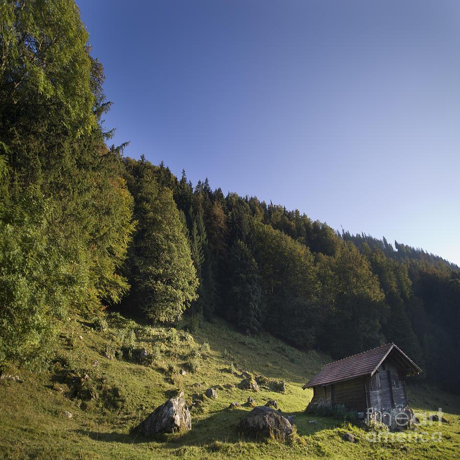 Alps Photograph - Switzerland by Angel Ciesniarska