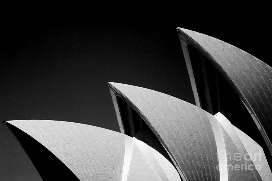 Sydney Opera House  Photograph by Sheila Smart Fine Art Photography