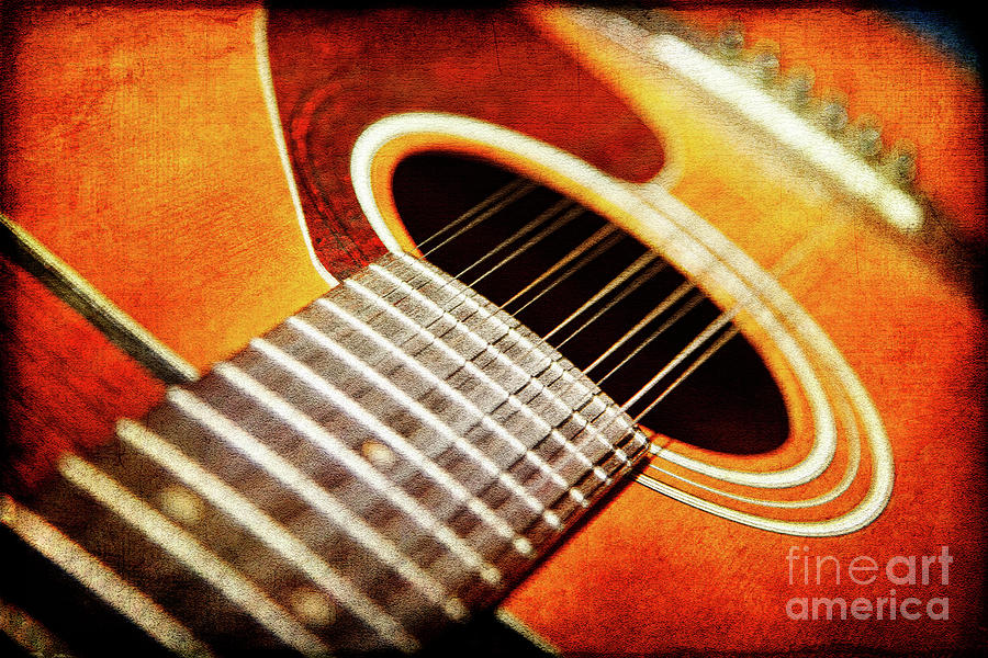 Strings Photograph - Symphony In Twelve by Lincoln Rogers