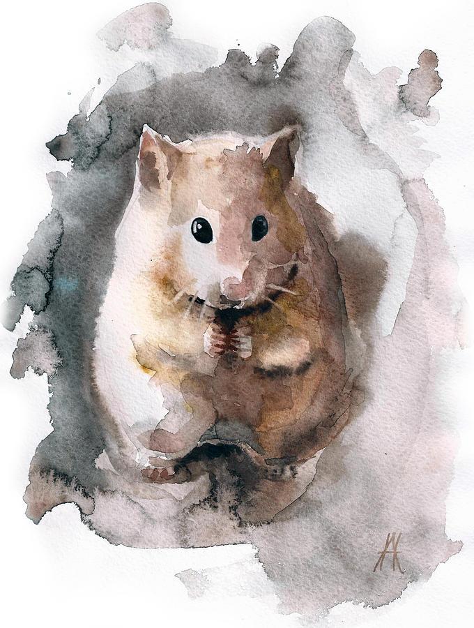 Syrian Hamster Drawing - Syrian Hamster by Nadezhda Appolat
