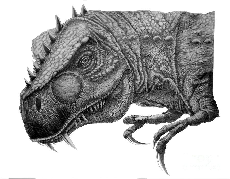 Pencil Drawing - T-rex by Murphy Elliott
