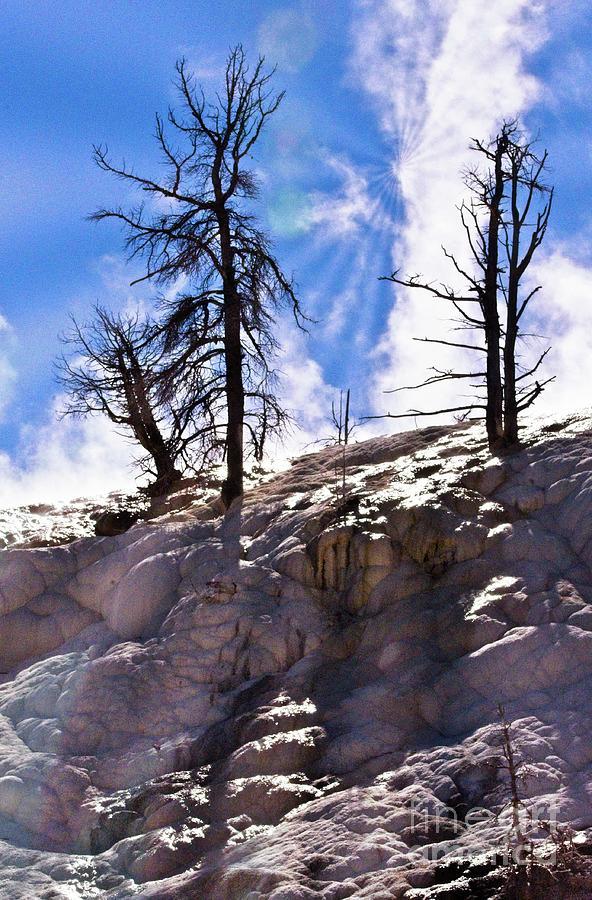 Landscape Photograph - Ta-da -- Its Yellowstone by James E Weaver