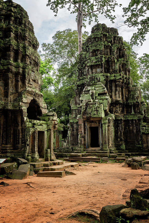 Angkor Wat Photograph - Ta Prohm by Stephen Stookey
