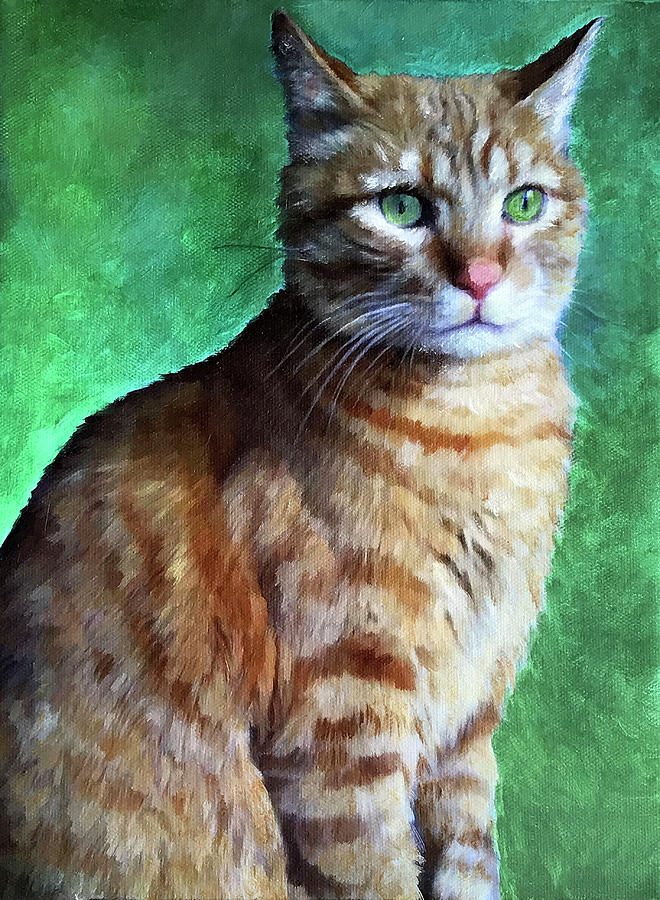 Tabby Cat by Portraits By NC
