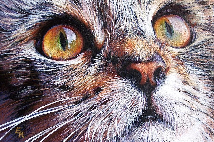 Tabby Drawing - Tabby Look 2 by Elena Kolotusha