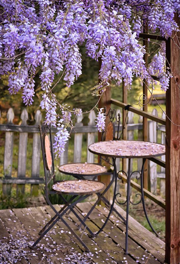 Greg Jackson Photograph   Table For Two Under Wisteria Canopy By Greg  Jackson