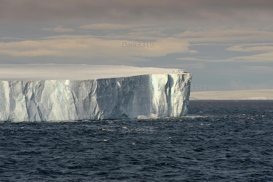 Iceberg Photograph - Tabular Iceberg Floating In Bransfield Strait At Sunset, Antarctica by Dani Prints and Images